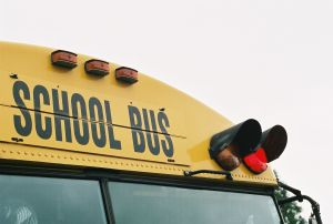 655548_school_bus_red_light.jpg